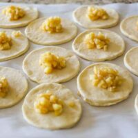 Apple Harvest Hand Pie recipes